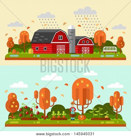 Flat design vector autumn landscape illustrations with barn, bench, rain, puddles, leaf fall. Garden with beds of carrots, tomatoes, gardener. Farming, agricultural, organic products concept.