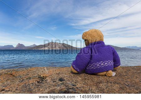 teddy bears sitting at the top of a large stone with deep blue sea blue sky with mountain background concept to travel and lonely