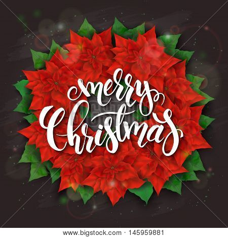 vector illustration of realistic christmas poinsettia flower wreath on top view with hand lettering christmas greetings label.