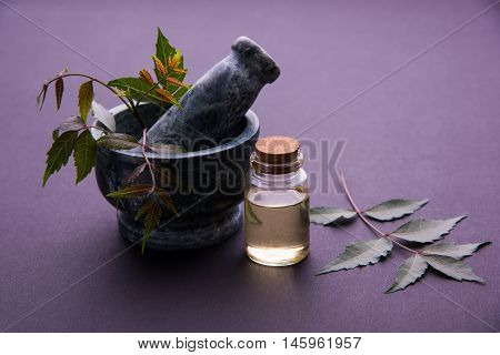 Ayurvedic Herbs Neem with Oil in bottle with mortar