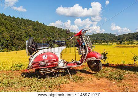 CHIANG MAI THAILAND - NOV 1 2014: Vespa parked along the road at green terraced rice field in Mae Klang Luang Mae Chaem Chiang Mai Thailand