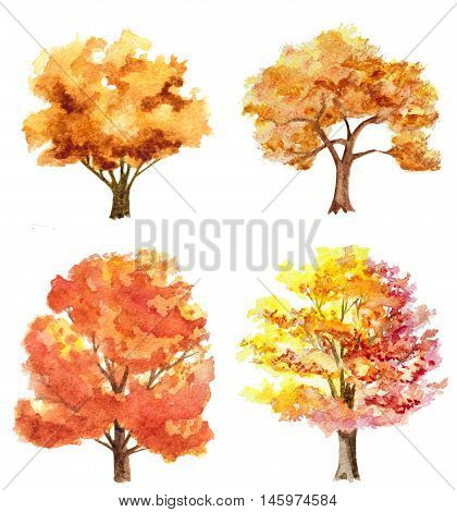 set of watercolor hand drawn autumn trees isolated on white