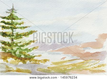 natural landscape with fir tree. hand painted watercolor illustration