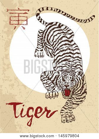 Chinese zodiac symbol of hand drawn Tiger with lettering. Horoscope and astrological vector sign of asian new year calendar. Graphic drawing with engraved animal. Chinese hieroglyph means Tiger