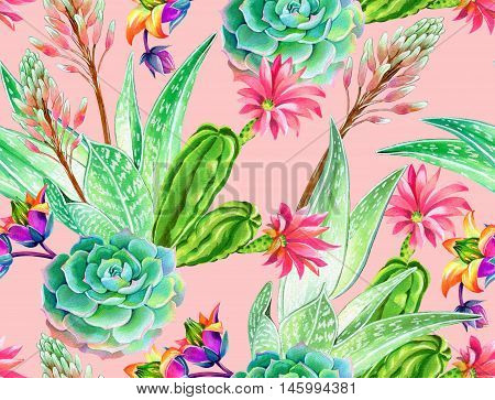 seamless pattern with succulents and cactuses. Blossoming succulents design in watercolor illustration. succulents bouquets for textile, fashion, interior. beautiful botanical design on pink.