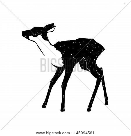 hand drawn fawn vector illustration young deer isolated on white background wildlife clip art