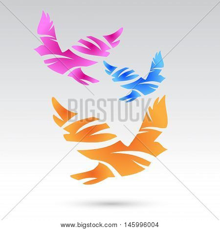 Vector colorful  pigeons. Abstract birds. Vector elements.