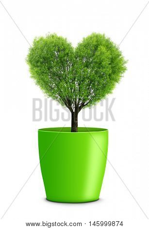Tree in the shape heart growing in green pot isolated on white background