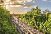 Railways going towards an industrial village - Set of railways going towards a train station surrounded by green trees and under the warm light of a sun setting down. poster