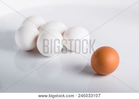 Individuality, Uniqueness. Group Of White Eggs And One Beige, Concept Exclusivity, Better Choice, Lo