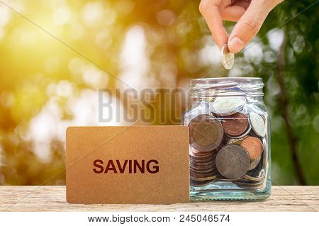 Saving And Invest Money Concept. Conceptual Hand Putting Coins Into Bottle On Nature Background. Bus