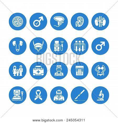 Urology Vector Flat Glyph Icons. Urologist, Bladder, Kidneys, Adrenal Glands, Prostate. Medical Pict
