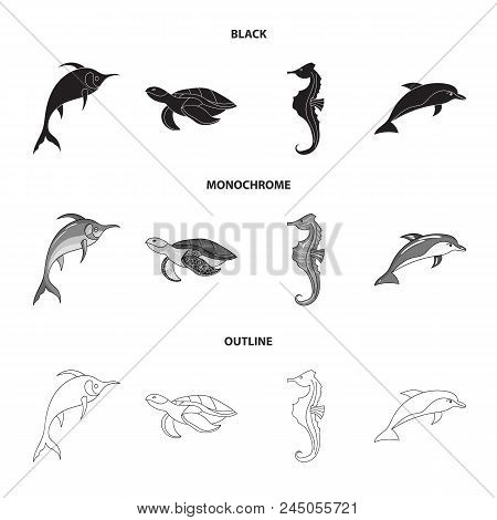 Merlin, Turtle And Other Species.sea Animals Set Collection Icons In Black, Monochrome, Outline Styl