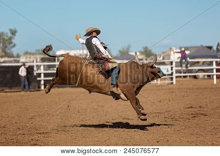 A Cowboy Competing In A Bull Riding Event At A Country Rodeo