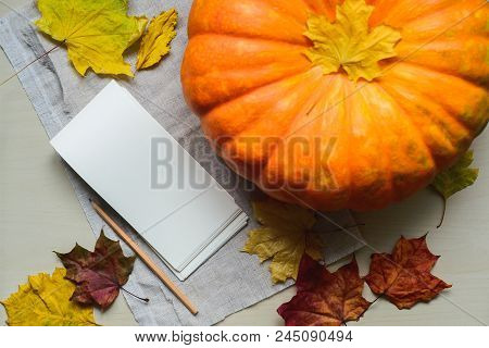 Composition Of Fresh Orange Pumpkin Harvest For Thanksgiving Day, Stock Photo Image