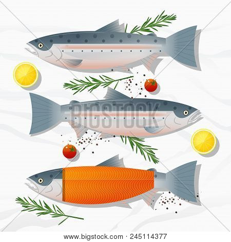Set Of Fresh Raw Salmon Fish And Spices Isolated On Marble Stone Background, Vector, Illustration