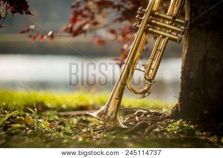 Autumn Jazz Instrument Trumpet Standing Alone In Nature