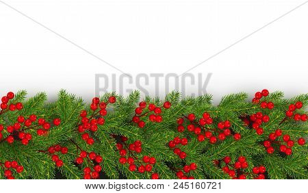 christmas and new year border of realistic branches of christmas tree and holly berries horizontal e