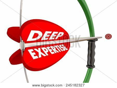 Deep Expertise Bow Arrow Target Experience Words 3d Illustration
