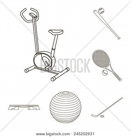 Different Kinds Of Sports Outline Icons In Set Collection For Design. Sport Equipment Vector Symbol