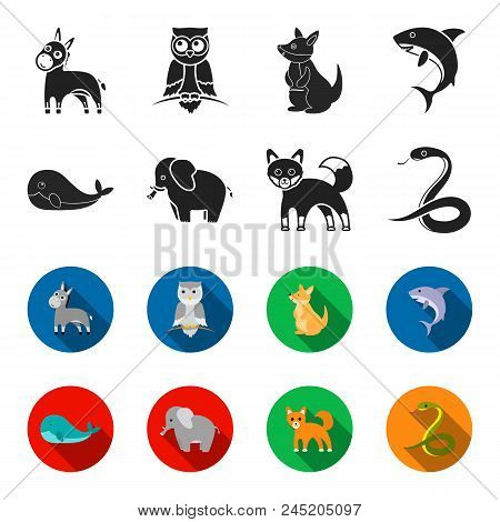 Whale, Elephant, Snake, Fox.animal Set Collection Icons In Black, Flet Style Vector Symbol Stock Ill