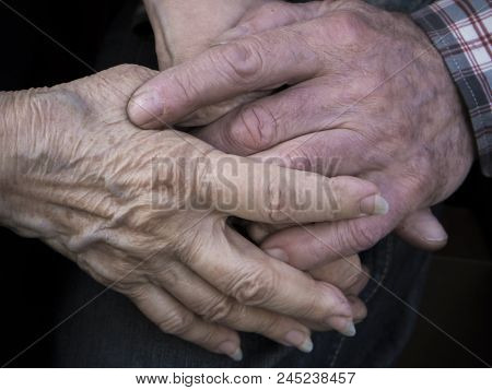 Elderly Couple Holding Hands, Expression Of Love And Tenderness, Close Up