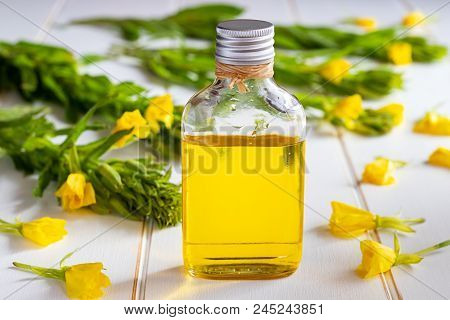 A Bottle Of Evening Primrose Oil And Fresh Blooming Plant On A White Background