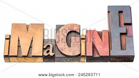imagine - isolated word abstract in vintage letterpress printing blocks