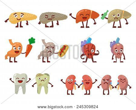 Human Organs Healthy And Unhealthy Vector Set. Medical Anatomic Funny Cartoon Character Pairs Of Org