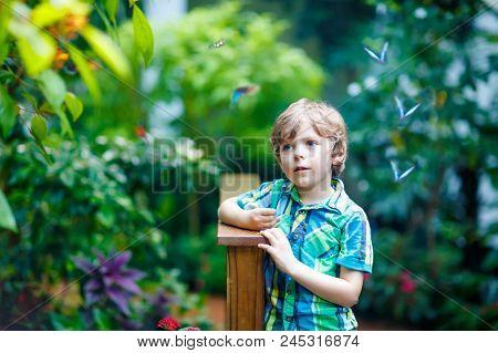 Little Blond Preschool Kid Boy Discovering Flowers And Butterflies At Botanic Garden. Fascinated Sch