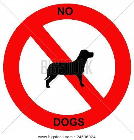 forbidden dogs