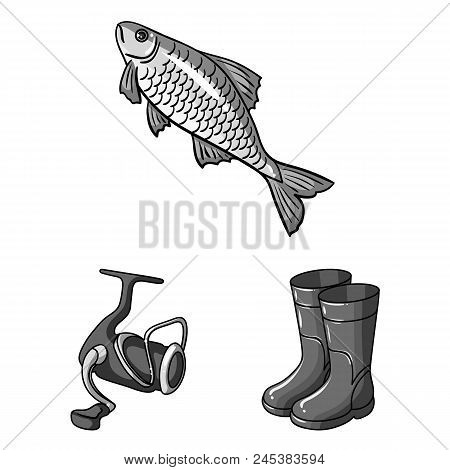 Fishing And Rest Monochrome Icons In Set Collection For Design. Tackle For Fishing Vector Symbol Sto