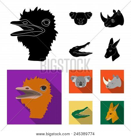 Ostrich, Koala, Rhinoceros, Crocodile, Realistic Animals Set Collection Icons In Black, Flat Style V