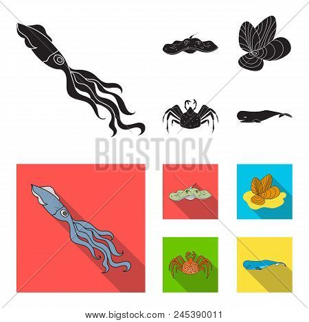 Electric Ramp, Mussels, Crab, Sperm Whale.sea Animals Set Collection Icons In Black, Flat Style Vect
