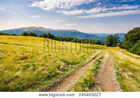 Road Through Grassy Meadow In Mountains. Beautiful Summer Landscape Of Carpathians. Apetska Mountain