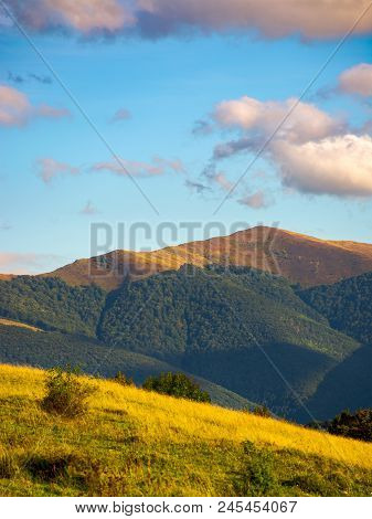 Grassy Slope In High Mountains. Beautiful Summer Landscape With Temnatyk Mountain In The Distance