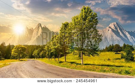 Trees Along The Road In To The Mountains At Sunset. Composite Mountainous Landscape With Rocky Peaks