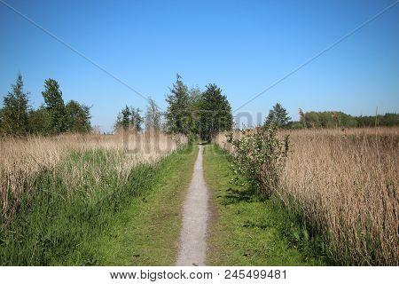 Park And Bird Reservate Around The Zevenhuizer Plas In Zevenhuizen And Rotterdam In The Netherlands