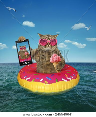 The Cat In Pink Sunglasses With An Ice Cream Cone Makes Selfie On The Inflatable Circle In The Sea.