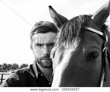 Good Looking, Hunky Cowboy Standing On Front Of His Stallion,  Horse With Black Shirt