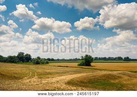 Countryside Landscape In Summer. Sunny Day In Countryside Fields. Country Road Through Fields. Count