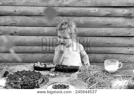 Vacation In The Countryside. Cute Little Boy In White Pinafore Eats Berries Raspberry Gooseberry Che