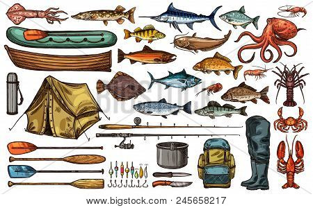 Fishing Equipment, Fish And Fisherman Tackle Sketch Set. Fishing Rod, Hook And Bait, Sea And River F