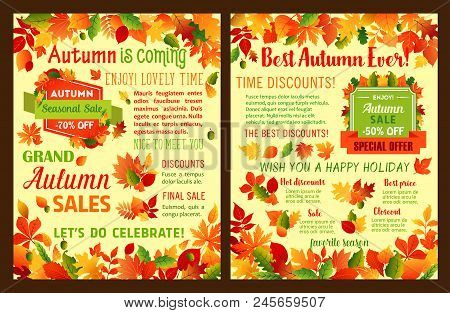 Autumn Sale Leaflet Or Fall Is Coming Poster Of Maple Leaf And Oak Acorn For Seasonal Shopping Disco