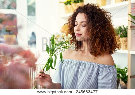 Wonderful Smell. Nice Young Woman Holding The Flower While Smelling It