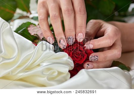 Female Hands Holding Red Roses. Girls Hand With Beautiful Manicure Holding Red Roses On White Silk.