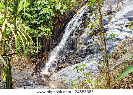 Cascade Waterfall In Deep Green Forest On Mountain River In Jungle. Langkawi, Malaysia.