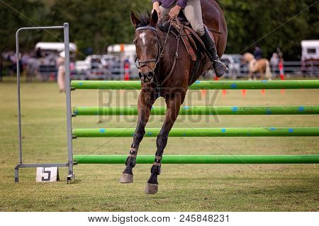 A Horse And Rider Competing In The Ring Of A Country Show In The Horse Jumping Event