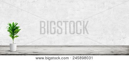 Vintage Room Interior With Plant In Pot Over Concrete Wall And Wood Floor Background. Wide Panorama