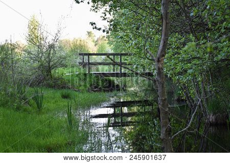 Wooden Footbridge Across A Small Stream In The Greenery At The Swedish Island Oland